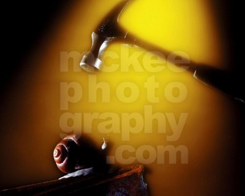 Hammer and Snail - Under Pressure Stock PHoto