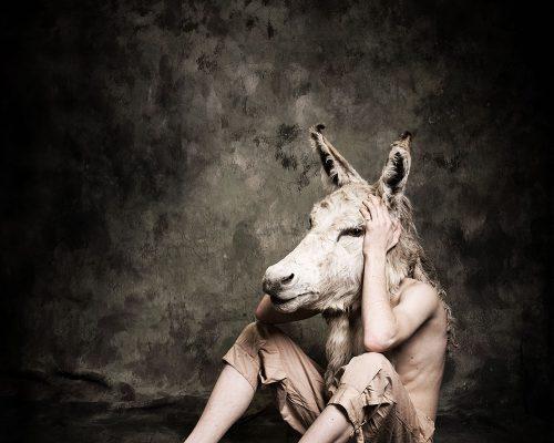 Donkeyboy by Matt McKee