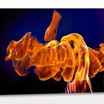 Lernaean Hydra,  16 x 24 photographic print on Aluminum