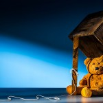 Bear Trap! fine art photography by Matt McKee