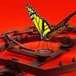 Butterfly in a Bear Trap on red background