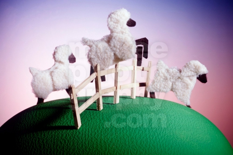 Counting Sheep Dreamstate!