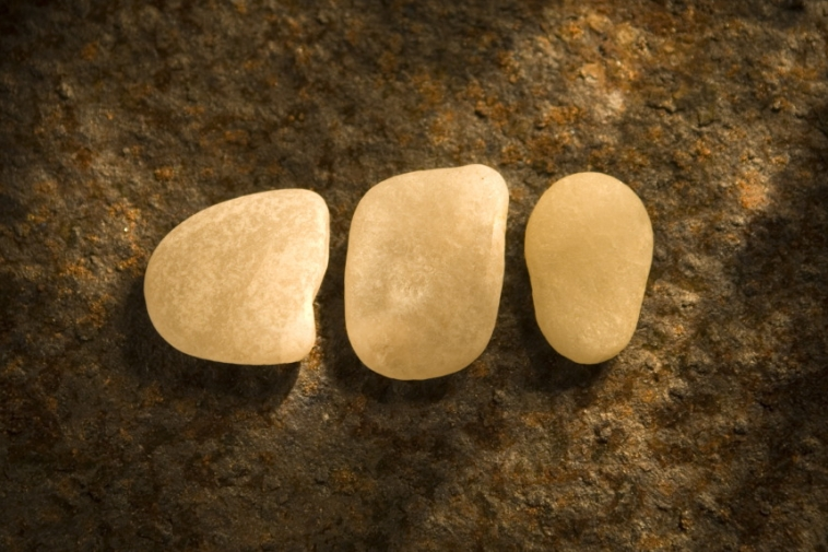 Stone Tryptic – Found on the Beach
